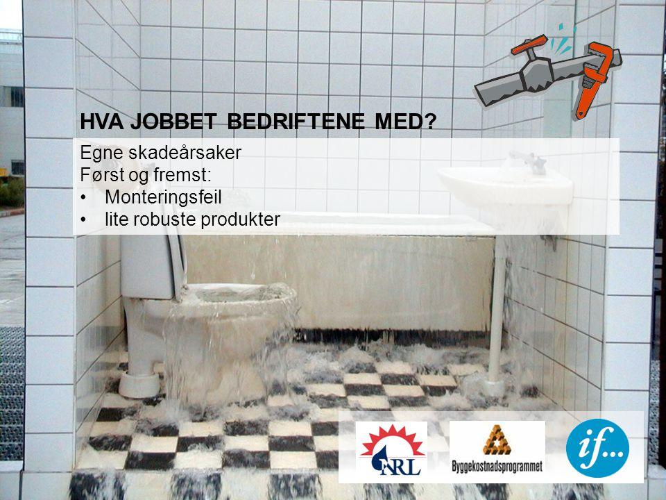HVA JOBBET BEDRIFTENE MED Egne skadeårsaker Først og fremst: Monteringsfeil lite robuste produkter