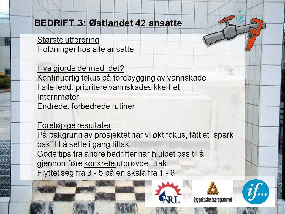 BEDRIFT 3: Østlandet 42 ansatte Største utfordring Holdninger hos alle ansatte Hva gjorde de med det.