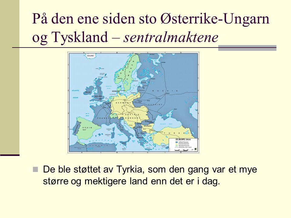 På den ene siden sto Østerrike-Ungarn og Tyskland – sentralmaktene De ble støttet av Tyrkia, som den gang var et mye større og mektigere land enn det