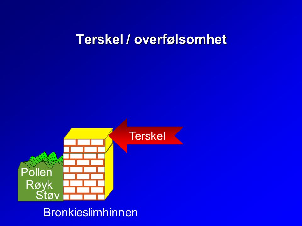 Terskel / overfølsomhet Terskel Bronkieslimhinnen Pollen Røyk Støv
