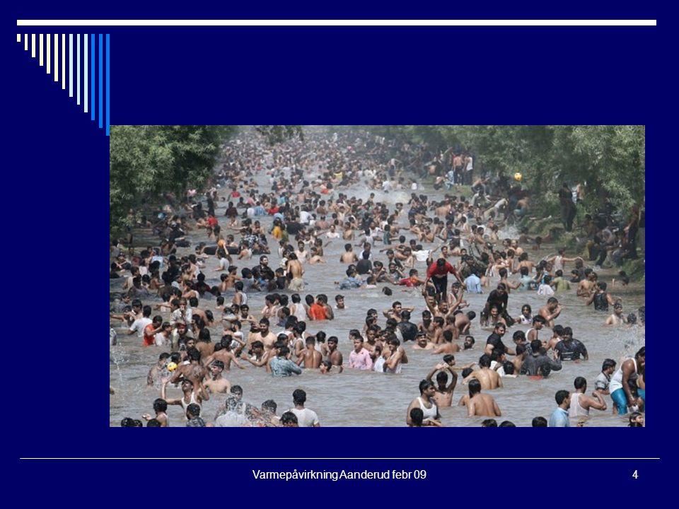 Varmepåvirkning Aanderud febr 094