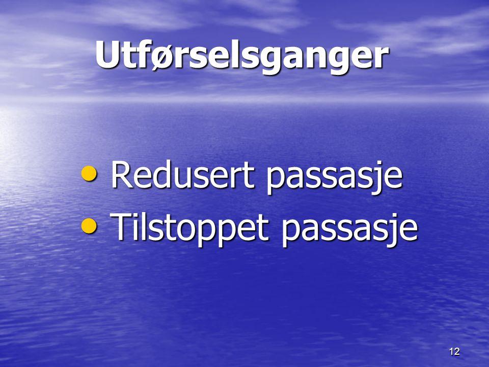 12 Utførselsganger Utførselsganger Redusert passasje Redusert passasje Tilstoppet passasje Tilstoppet passasje