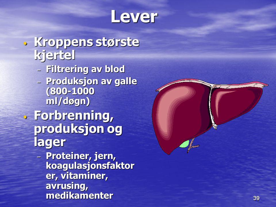 39 Lever Lever Kroppens største kjertel Kroppens største kjertel – Filtrering av blod – Produksjon av galle (800-1000 ml/døgn) Forbrenning, produksjon
