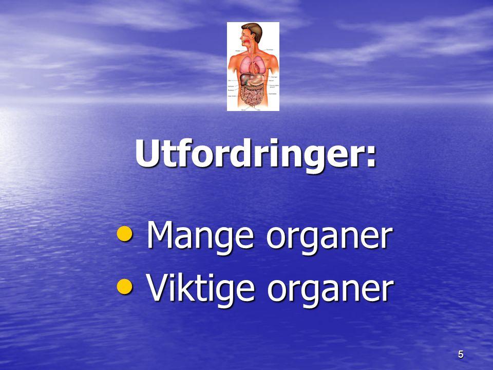 5 Utfordringer: Mange organer Mange organer Viktige organer Viktige organer