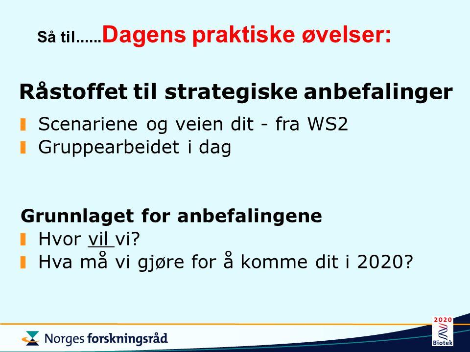 Råstoffet til strategiske anbefalinger Scenariene og veien dit - fra WS2 Gruppearbeidet i dag Grunnlaget for anbefalingene Hvor vil vi.