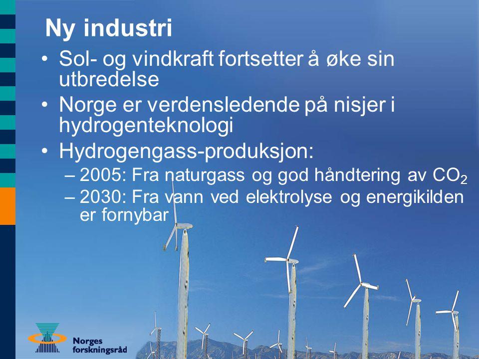 Ny industri Sol- og vindkraft fortsetter å øke sin utbredelse Norge er verdensledende på nisjer i hydrogenteknologi Hydrogengass-produksjon: –2005: Fra naturgass og god håndtering av CO 2 –2030: Fra vann ved elektrolyse og energikilden er fornybar