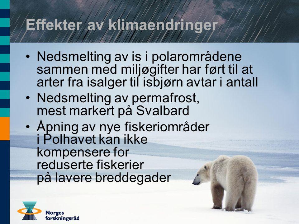Effekter av klimaendringer Nedsmelting av is i polarområdene sammen med miljøgifter har ført til at arter fra isalger til isbjørn avtar i antall Nedsmelting av permafrost, mest markert på Svalbard Åpning av nye fiskeriområder i Polhavet kan ikke kompensere for reduserte fiskerier på lavere breddegader