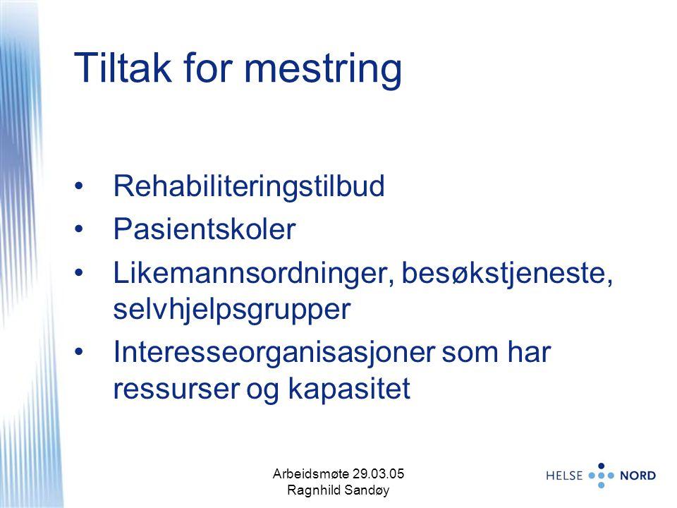 Arbeidsmøte 29.03.05 Ragnhild Sandøy 12 Tiltak for mestring Rehabiliteringstilbud Pasientskoler Likemannsordninger, besøkstjeneste, selvhjelpsgrupper Interesseorganisasjoner som har ressurser og kapasitet