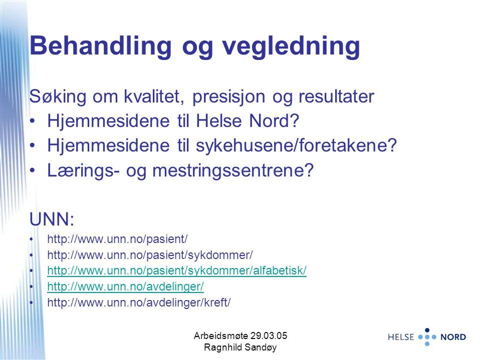 Arbeidsmøte 29.03.05 Ragnhild Sandøy 5 Behandling og vegledning Søking om kvalitet, presisjon og resultater Hjemmesidene til Helse Nord? Hjemmesidene