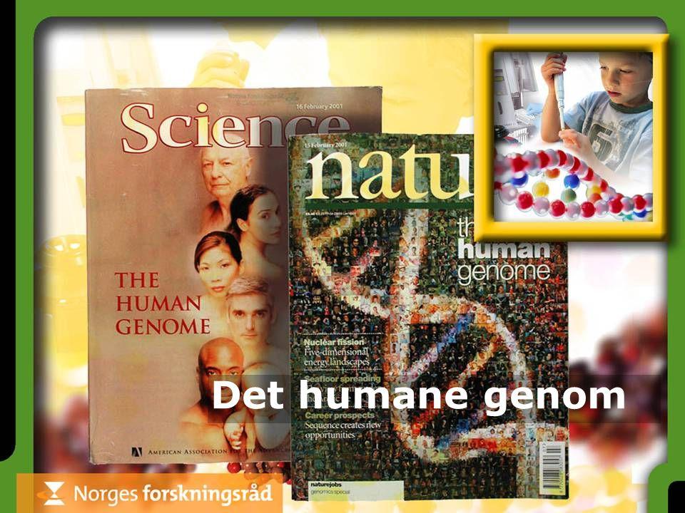 Det humane genom