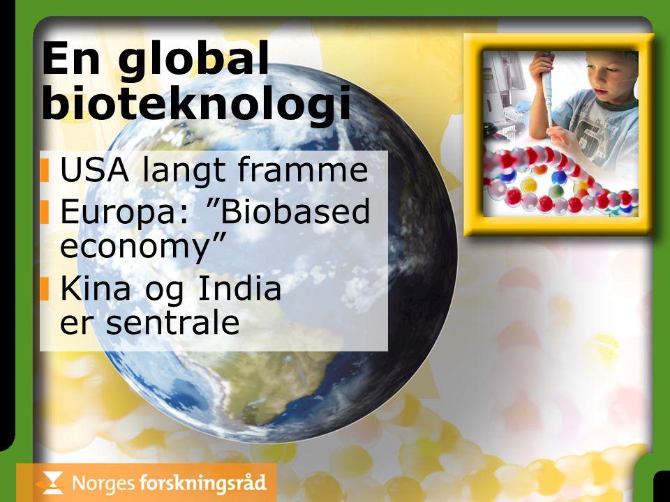 """En global bioteknologi USA langt framme Europa: """"Biobased economy"""" Kina og India er sentrale"""