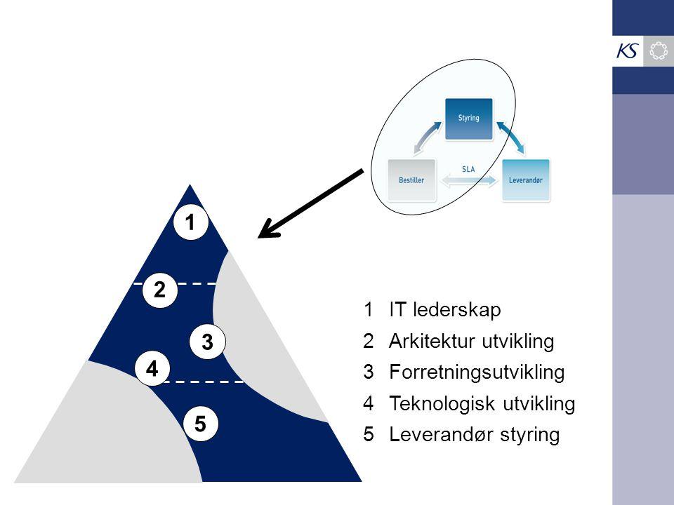 1 1IT lederskap 2 2Arkitektur utvikling 3 3Forretningsutvikling 4 4Teknologisk utvikling 5 5Leverandør styring