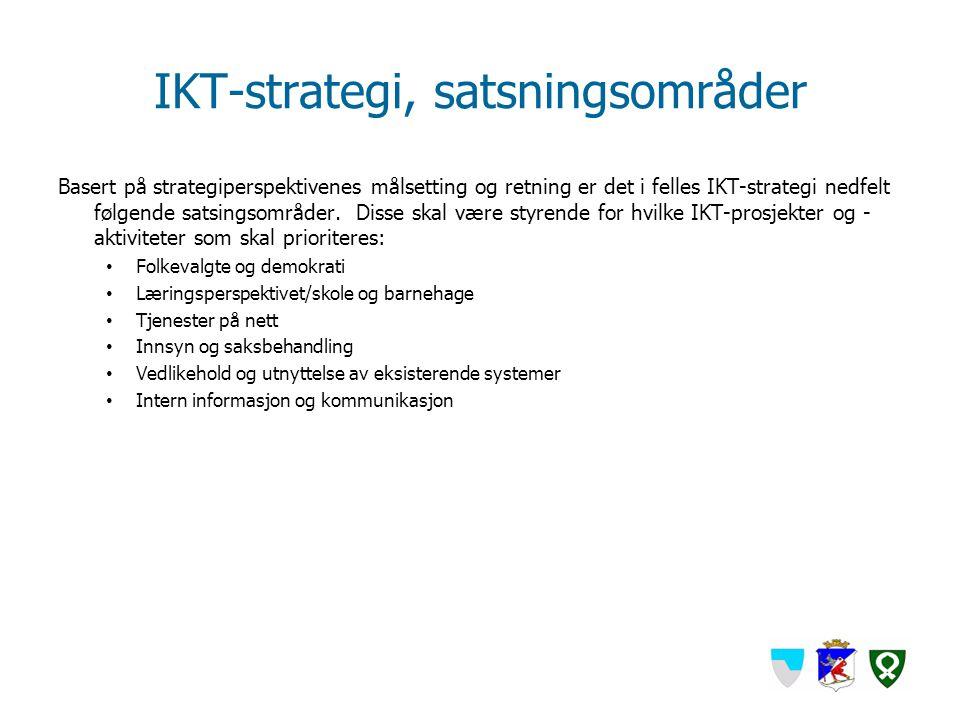 IKT-strategi, satsningsområder Basert på strategiperspektivenes målsetting og retning er det i felles IKT-strategi nedfelt følgende satsingsområder. D