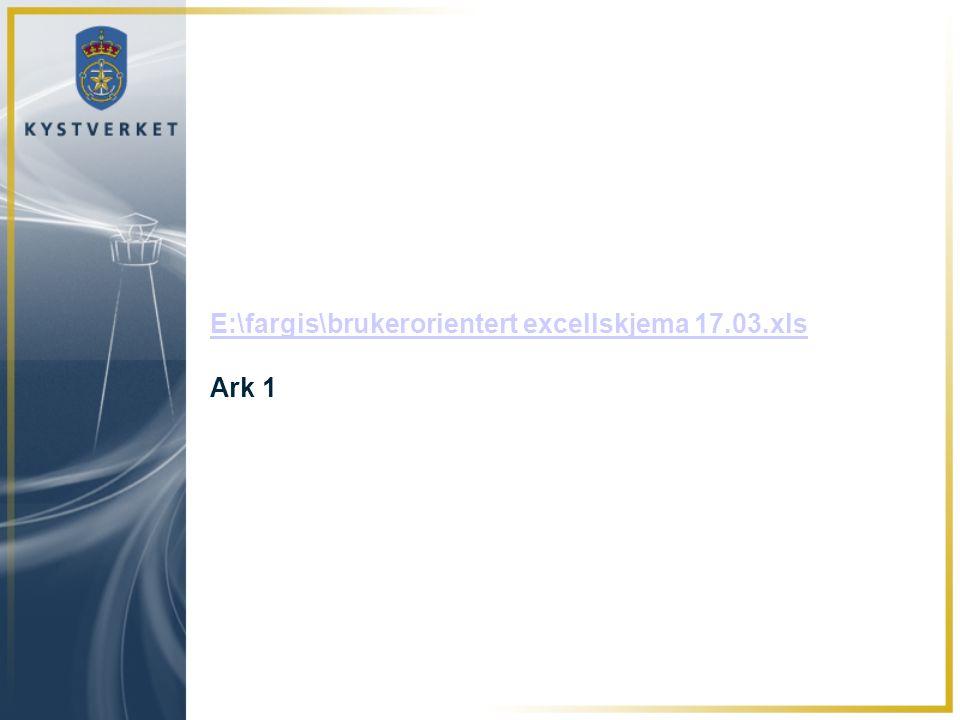 E:\fargis\brukerorientert excellskjema 17.03.xls Ark 1