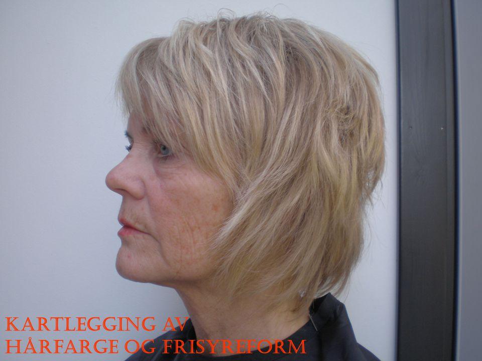 Kartlegging av hårfarge og frisyreform