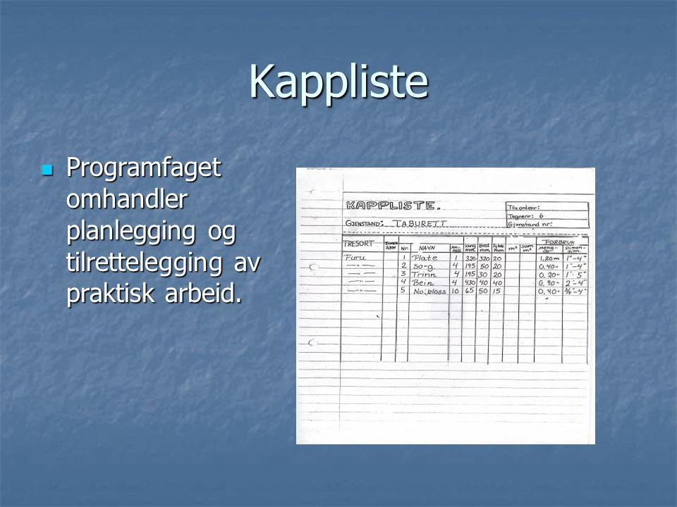 Kappliste Programfaget omhandler planlegging og tilrettelegging av praktisk arbeid. Programfaget omhandler planlegging og tilrettelegging av praktisk