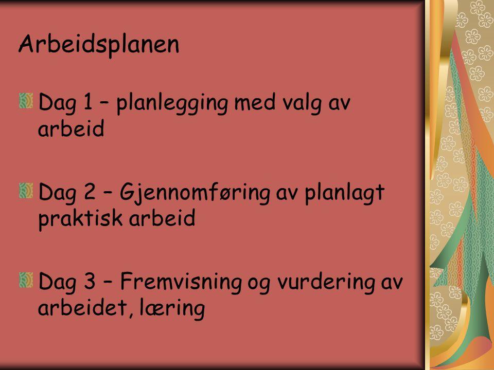 Arbeidsplanen Dag 1 – planlegging med valg av arbeid Dag 2 – Gjennomføring av planlagt praktisk arbeid Dag 3 – Fremvisning og vurdering av arbeidet, l