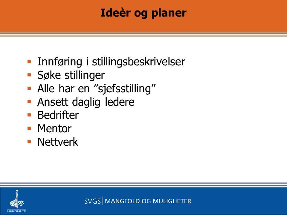Ideèr og planer  Innføring i stillingsbeskrivelser  Søke stillinger  Alle har en sjefsstilling  Ansett daglig ledere  Bedrifter  Mentor  Nettverk