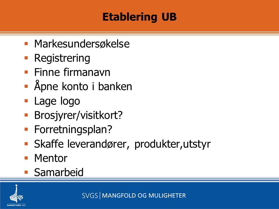 Etablering UB  Markesundersøkelse  Registrering  Finne firmanavn  Åpne konto i banken  Lage logo  Brosjyrer/visitkort.