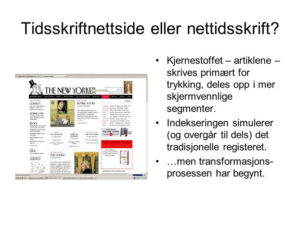 Tidsskriftnettside eller nettidsskrift.