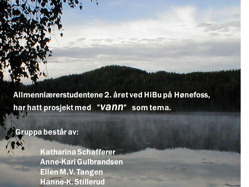 """Allmennlærerstudentene 2. året ved HiBu på Hønefoss, har hatt prosjekt med """" vann """" som tema. Gruppa består av: Katharina Schafferer Anne-Kari Gulbran"""