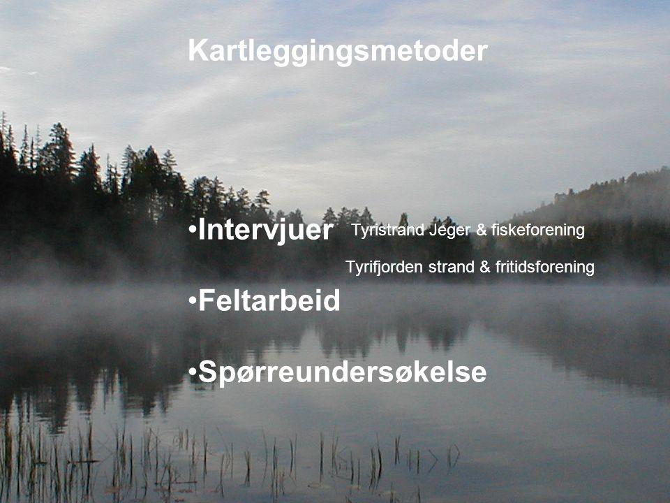 Kartleggingsmetoder Intervjuer Feltarbeid Spørreundersøkelse Tyristrand Jeger & fiskeforening Tyrifjorden strand & fritidsforening