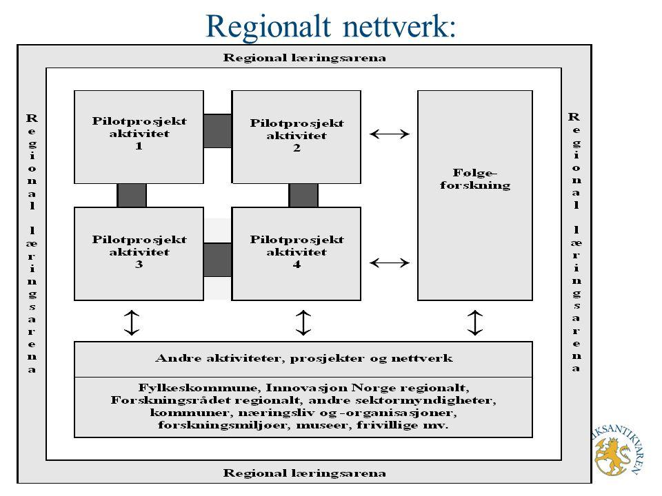Nettverks-tiltak (2) Nasjonalt, landsdekkende nettverk med pilotprosjektene samlet som nav Koble alle pilotprosjektene og følgeforskningsaktivitetene Andre prosjekter og aktører, og annen kunnskapsproduksjon nasjonalt og internasjonalt RA ansvarlig – sammen med IN og Forskningsrådet?
