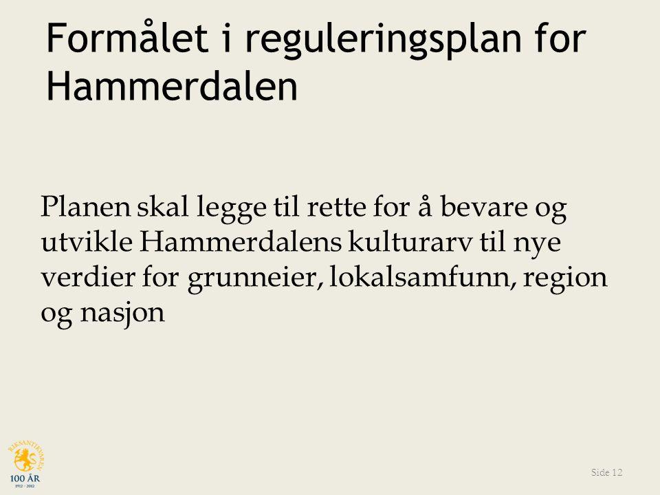 Formålet i reguleringsplan for Hammerdalen Planen skal legge til rette for å bevare og utvikle Hammerdalens kulturarv til nye verdier for grunneier, lokalsamfunn, region og nasjon Side 12