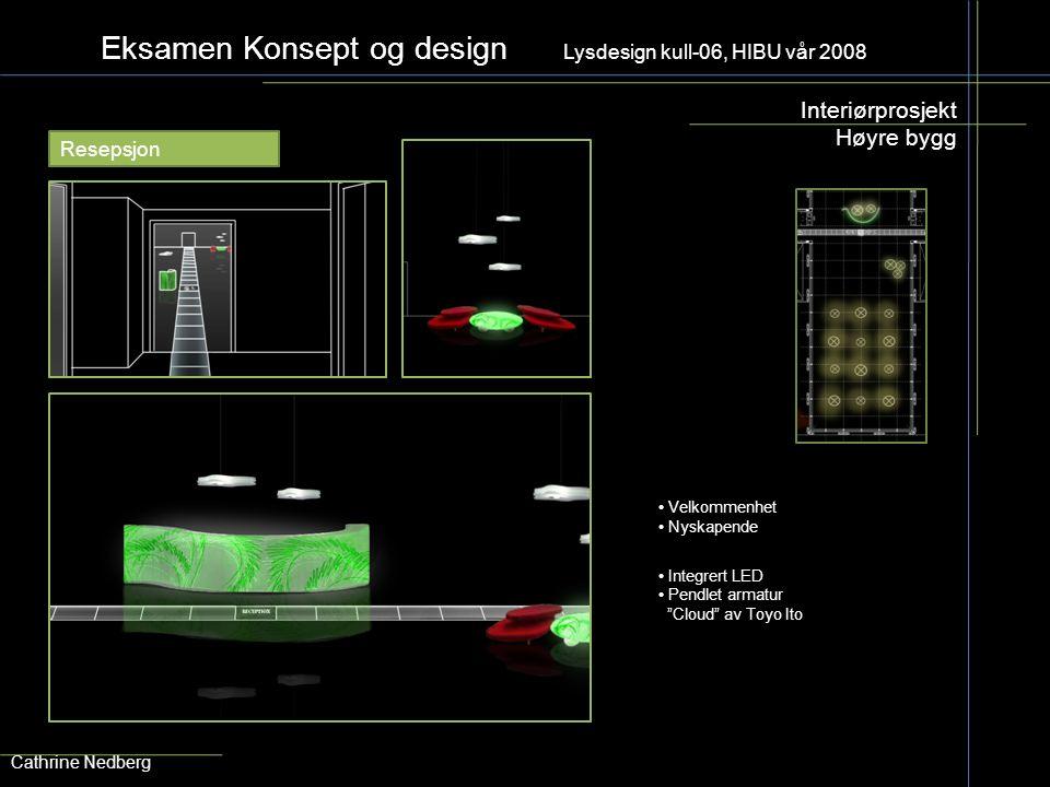 """Eksamen Konsept og design Lysdesign kull-06, HIBU vår 2008 Interiørprosjekt Høyre bygg Cathrine Nedberg Resepsjon Integrert LED Pendlet armatur """"Cloud"""
