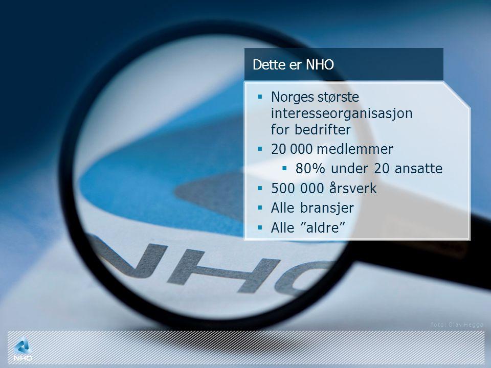 Dette er NHO  Norges største interesseorganisasjon for bedrifter  20 000 medlemmer  80% under 20 ansatte  500 000 årsverk  Alle bransjer  Alle aldre foto: Olav Heggø