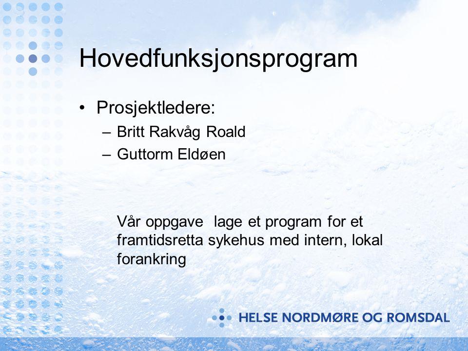Hovedfunksjonsprogram Prosjektledere: –Britt Rakvåg Roald –Guttorm Eldøen Vår oppgave lage et program for et framtidsretta sykehus med intern, lokal f