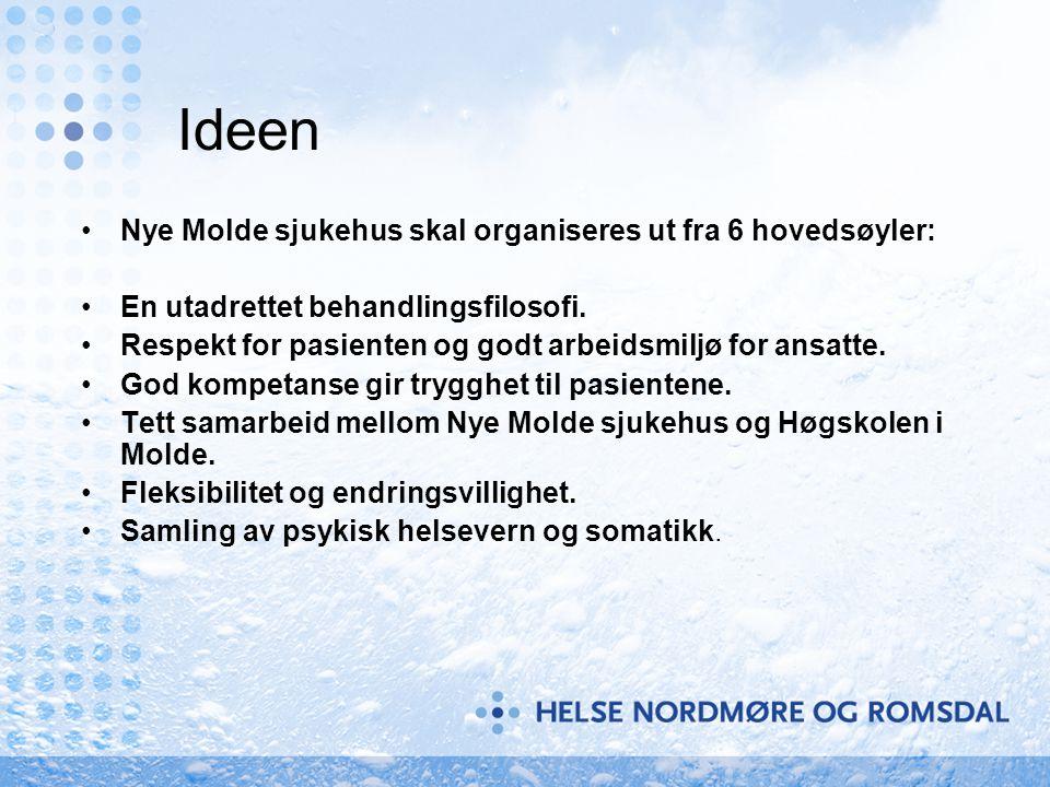 Ideen Nye Molde sjukehus skal organiseres ut fra 6 hovedsøyler: En utadrettet behandlingsfilosofi. Respekt for pasienten og godt arbeidsmiljø for ansa