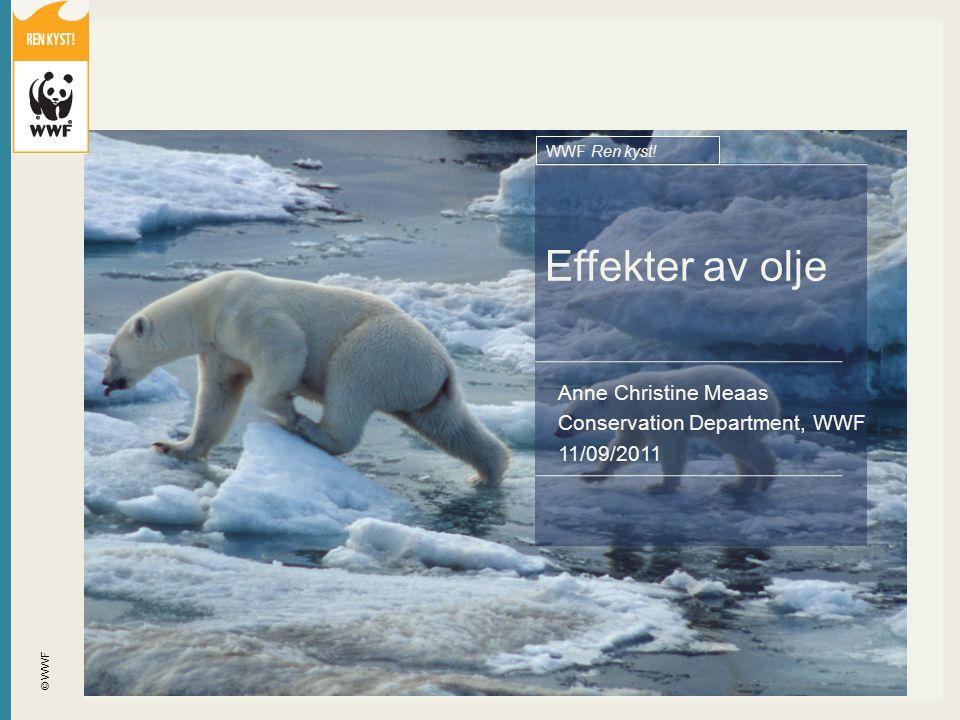 © WWF Effekter av olje WWF Ren kyst! Anne Christine Meaas Conservation Department, WWF 11/09/2011