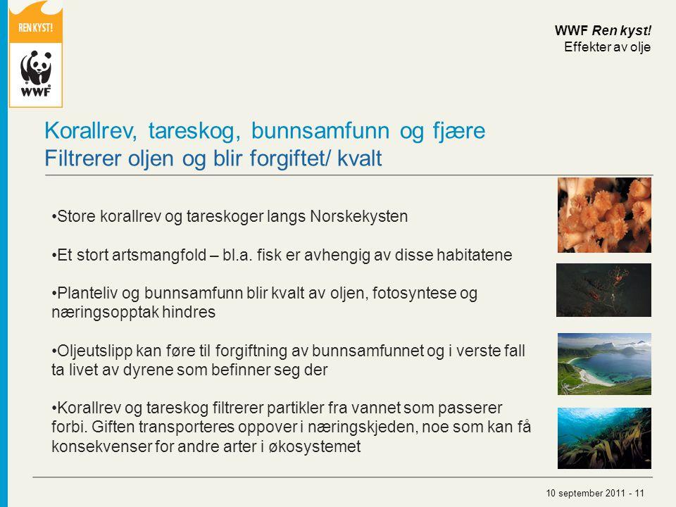 Store korallrev og tareskoger langs Norskekysten Et stort artsmangfold – bl.a. fisk er avhengig av disse habitatene Planteliv og bunnsamfunn blir kval