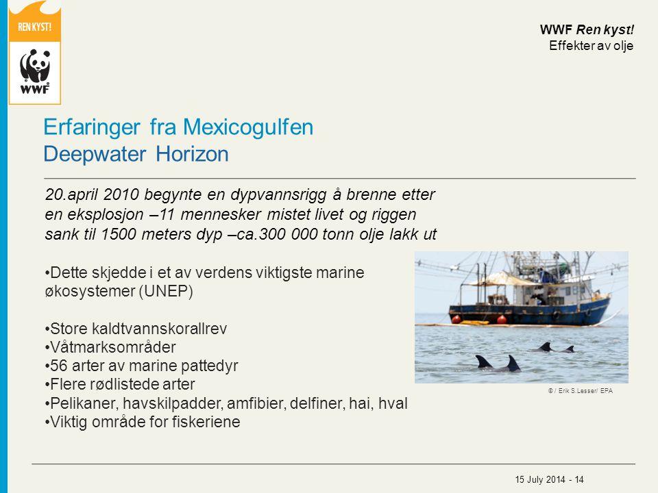 Erfaringer fra Mexicogulfen Deepwater Horizon 20.april 2010 begynte en dypvannsrigg å brenne etter en eksplosjon –11 mennesker mistet livet og riggen