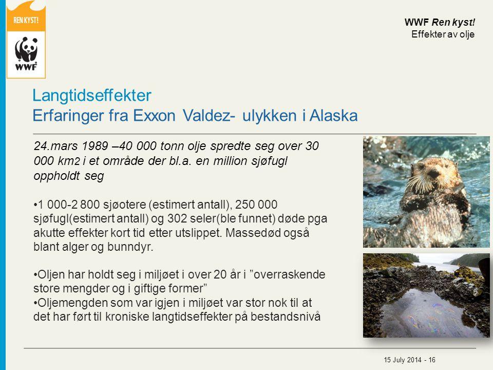 Langtidseffekter Erfaringer fra Exxon Valdez- ulykken i Alaska 24.mars 1989 –40 000 tonn olje spredte seg over 30 000 km 2 i et område der bl.a. en mi