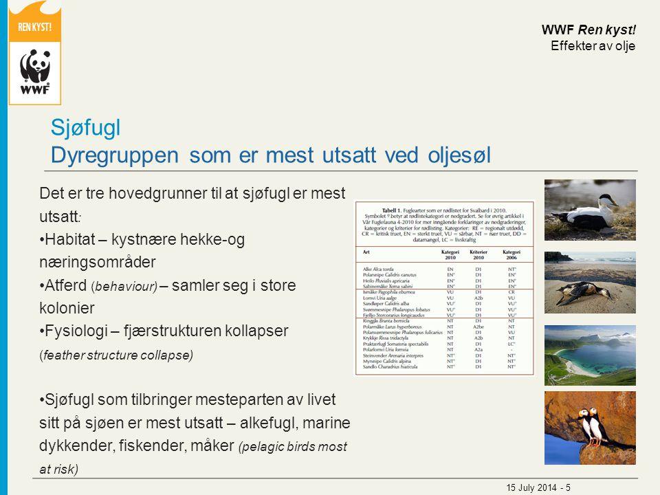 Sjøfugl Dyregruppen som er mest utsatt ved oljesøl Det er tre hovedgrunner til at sjøfugl er mest utsatt : Habitat – kystnære hekke-og næringsområder