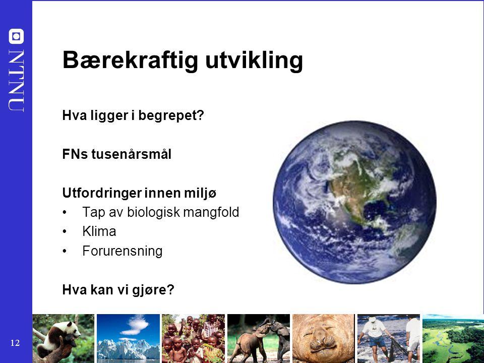 12 Bærekraftig utvikling Hva ligger i begrepet? FNs tusenårsmål Utfordringer innen miljø Tap av biologisk mangfold Klima Forurensning Hva kan vi gjøre