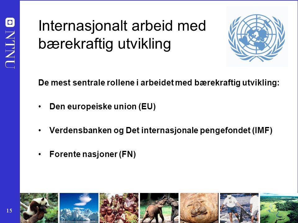 15 Internasjonalt arbeid med bærekraftig utvikling De mest sentrale rollene i arbeidet med bærekraftig utvikling: Den europeiske union (EU) Verdensbanken og Det internasjonale pengefondet (IMF) Forente nasjoner (FN)