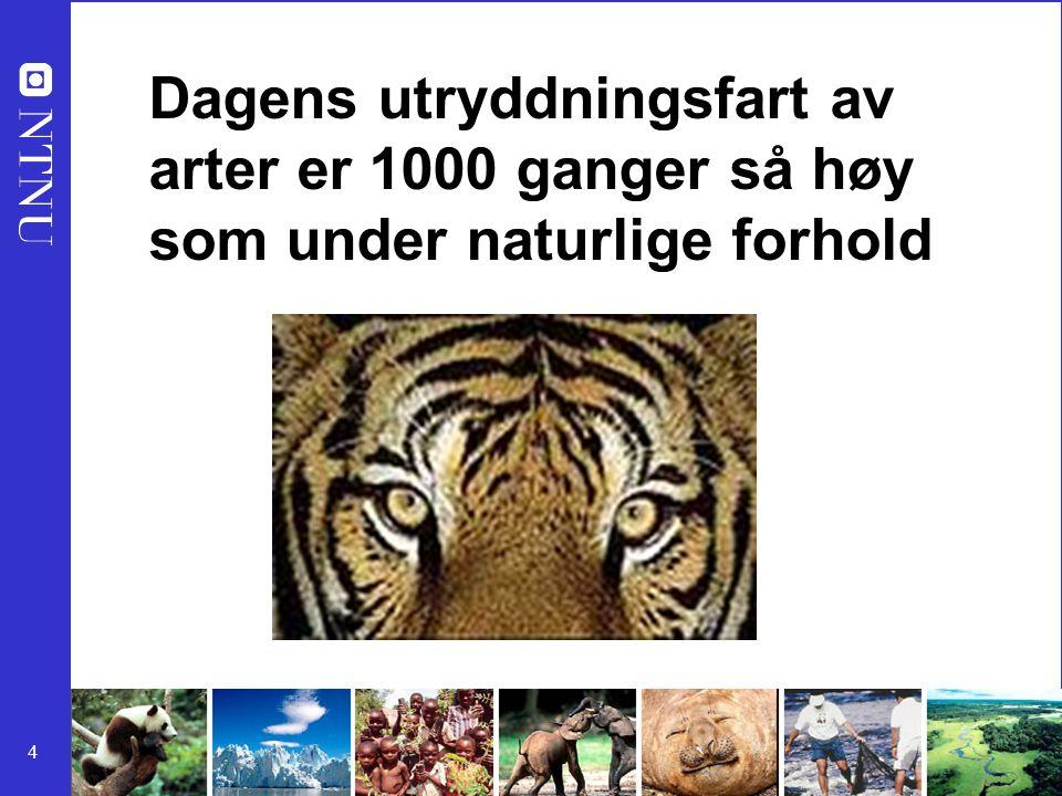 4 Dagens utryddningsfart av arter er 1000 ganger så høy som under naturlige forhold