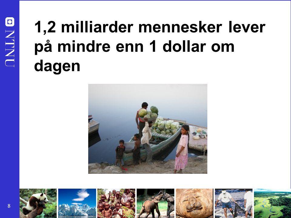 8 1,2 milliarder mennesker lever på mindre enn 1 dollar om dagen