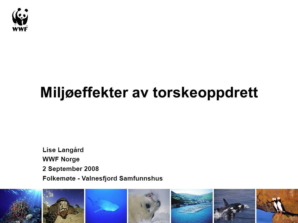 Miljøeffekter av torskeoppdrett Lise Langård WWF Norge 2 September 2008 Folkemøte - Valnesfjord Samfunnshus