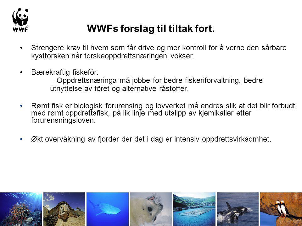 WWFs forslag til tiltak fort. Strengere krav til hvem som får drive og mer kontroll for å verne den sårbare kysttorsken når torskeoppdrettsnæringen vo