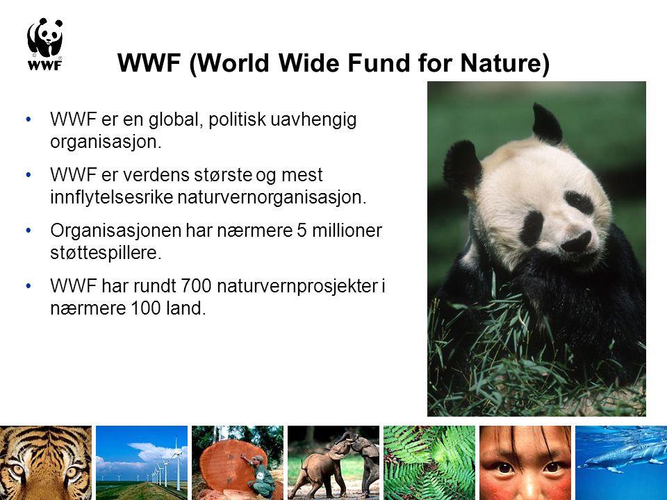 WWF (World Wide Fund for Nature) WWF er en global, politisk uavhengig organisasjon. WWF er verdens største og mest innflytelsesrike naturvernorganisas