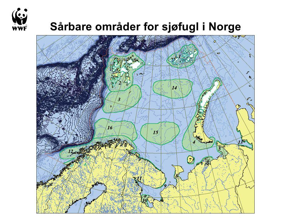 Sårbare områder for sjøfugl i Norge