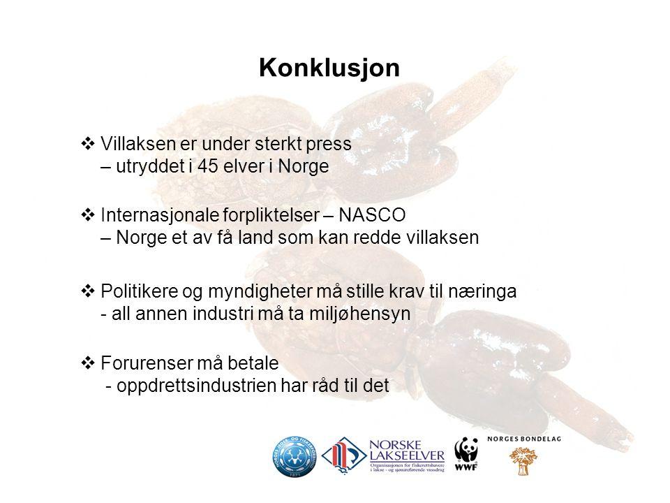  Villaksen er under sterkt press – utryddet i 45 elver i Norge  Internasjonale forpliktelser – NASCO – Norge et av få land som kan redde villaksen  Politikere og myndigheter må stille krav til næringa - all annen industri må ta miljøhensyn  Forurenser må betale - oppdrettsindustrien har råd til det Konklusjon