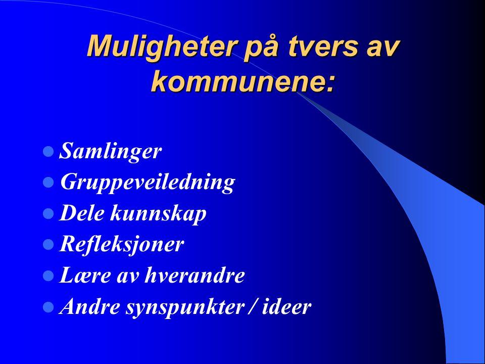 Muligheter på tvers av kommunene: Samlinger Gruppeveiledning Dele kunnskap Refleksjoner Lære av hverandre Andre synspunkter / ideer