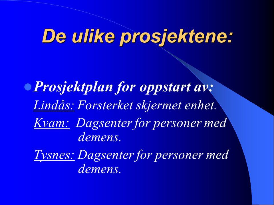 De ulike prosjektene: Prosjektplan for oppstart av: Lindås: Forsterket skjermet enhet. Kvam: Dagsenter for personer med demens. Tysnes: Dagsenter for