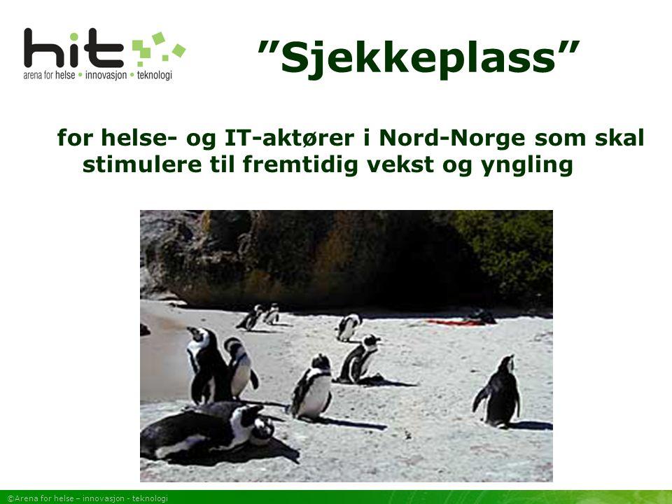 ©Arena for helse – innovasjon - teknologi Sjekkeplass for helse- og IT-aktører i Nord-Norge som skal stimulere til fremtidig vekst og yngling