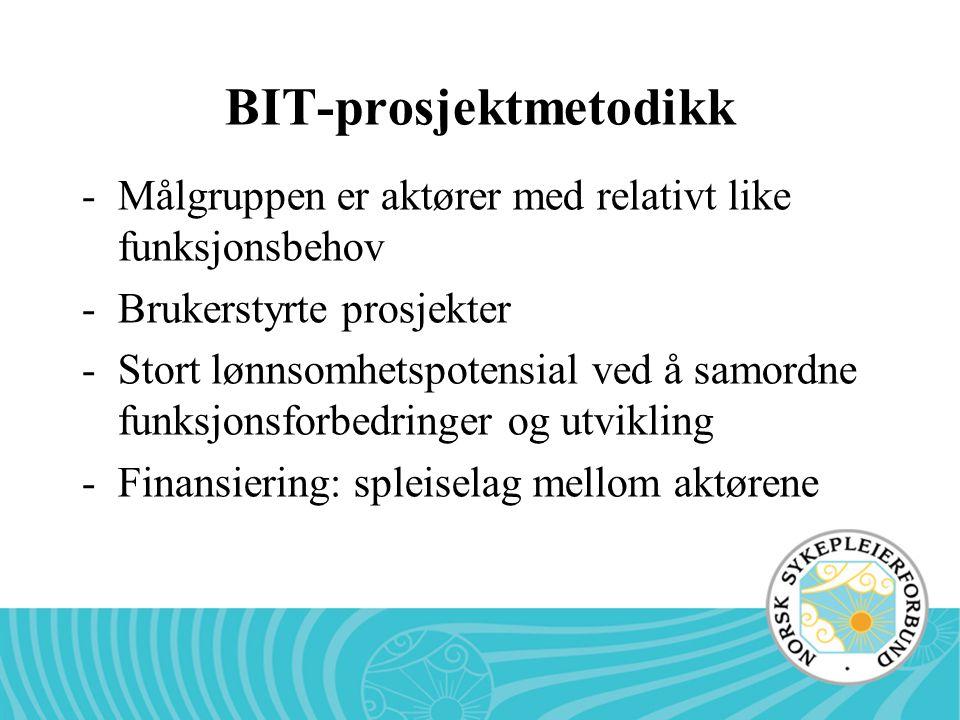 BIT-prosjektmetodikk -Målgruppen er aktører med relativt like funksjonsbehov -Brukerstyrte prosjekter -Stort lønnsomhetspotensial ved å samordne funks
